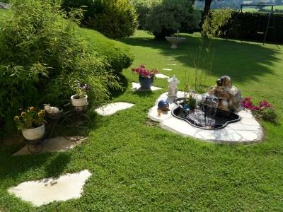 Les plantes aquatiques pour embellir votre jardin Embellir son jardin
