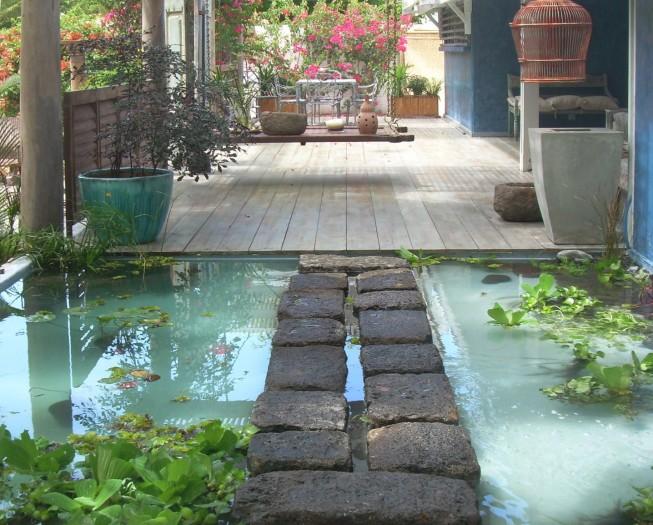 Le bassin carpe koi haut de gamme for Acheter carpe pour etang